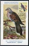 Japon - Carte Maximum 1964 Oiseau