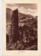 VAR, ROQUEBRUNE, Planche Densité = 200g, Format 20 X 29 Cm, (Maniezzi) - Historical Documents