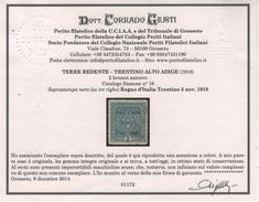 1918 Trentino-Alto Adige Terre Redente 2 K. MNH Certificato Giusti +++ Rarità - Trentino