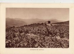 PYRENEES ORIENTALES, Environs De BANYULS, Planche Densité = 200g, Format: 20 X 29 Cm, (A. Chauvin) - Documents Historiques