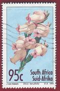 1994 - Erica Tenuifolia - Mi:ZA 944   Used - South Africa (1961-...)