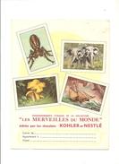 Protège Cahier KOHLER Et NESLE Les Merveilles Du Monde - Protège-cahiers