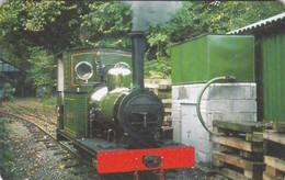 Isle Of Man, MAN 089, Steam Trains, Engine No.2, Sea Lion, 2 Scans.