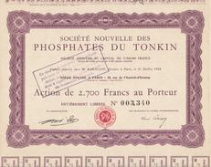 Indochine - Sté Nouvelle Des Phosphates Du Tonkin - Capital De 17 820 000 F / Action De 2 700 F - Asie
