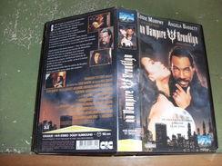 """Rare Film : """" Un Vampire à Brooklyn """" - Comedy"""