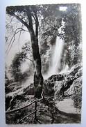 DEUTSCHLAND - BADEN WURTTEMBERG - BAD URACH - Wasserfall - 1960 - Bad Urach