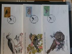 A7045    3   FDC GUERNSEY  WWF - Oiseaux