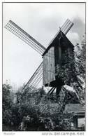 MALDEREN Bij Londerzeel (Vlaams-Brab.) - Molen/moulin - De Heidemolen Voor Zijn Instorting (door Storm Vernield In 1990) - Londerzeel