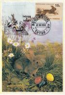 54263- EASTER, EGGS, FLOWERS, RABBITS, MAXIMUM CARD, 1994, ROMANIA