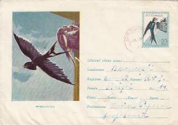 54288- SWALLOWS, BIRDS, COVER STATIONERY, 1961, ROMANIA
