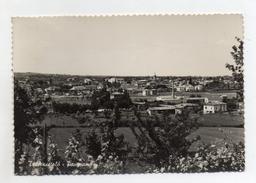 Traversetolo (Parma) - Panorama - Viaggiata Nel 1960/1970 - (FDC2623) - Parma