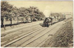 The Mumbles Train. - Trains