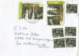 Ghana 2015 Techiman Botanical Gardens Aburi Royal Palm Papaya Fruit Cover - Ghana (1957-...)