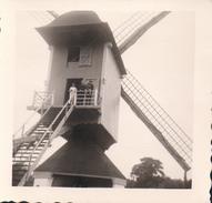 Foto Photo (8 X 8 Cm) Molen Moulin Windmolen 'Molen Van Millegem' In Het Openluchtmuseum Van Bokrijk - Genk