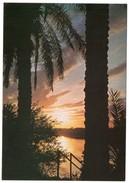 IRAQ/IRAK - SUNSET ON THE TIGRIS - Iraq