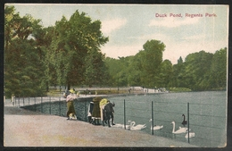 Great Britain: London - Duck Pond, Regent's Park - Posted 1907 - Battersea Postmark - Autres
