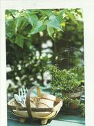 135569 JUN LEKI - Cartoline