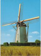 Nederland/Holland, Biggekerke, Korenmolen, Grondzeiler, Ca. 1970 - Nederland