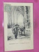 LHOMMAIZE  1910   ARDT MONTMORILLON / CANTON LUSSAC  /  ATTELAGE DU POITOU   / CIRC OUI - Autres Communes