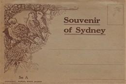612Bc  Australie Sydney Carte Carnet Dépliant De 20 Vues Views Vers 1930 - Sydney