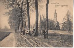 Averbode Abdij Uit De Richting Veerle - Scherpenheuvel-Zichem
