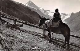A La Forclaz D'Herens En Route Pour Les Mayens, Pferd, Reiterin - VS Valais