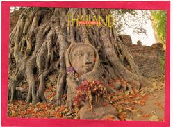 Modern Post Card Of Ayutthaya, Thailand,D15. - Thailand