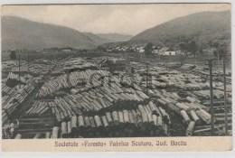 "Romania - Jud. Bacau - Societatea ""Foresta"" - Fabrica Scutaru - Wood Industry - Roemenië"