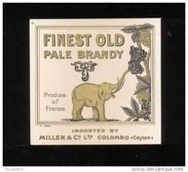 Etiquette De  Brandy   Finest Old Pale  -  Miller    (thème Eléphant) - Etiquetas