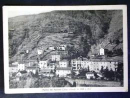 EMILIA ROMAGNA -BOLOGNA -MOLINO DEL PALLONE -F.G. LOTTO N°575 - Bologna
