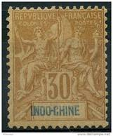 Indochine (1892) N 11 * (charniere)