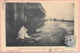 La Neige à Alger - 3 Janvier 1905 - L'ours En Neigee Du Boulevard Carnot - Alger
