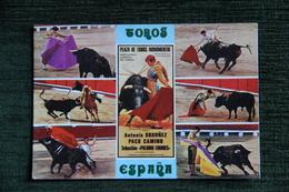 TOROS - Corrida