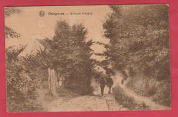 Ottignies - Avenue Gergey - 1920 ( Voir Verso ) - Ottignies-Louvain-la-Neuve