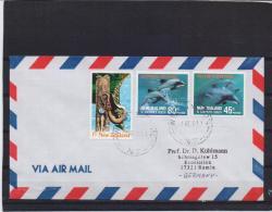 New Zealand - Hector's Dolphin - 7/12/2011  (RM10880) - Dolfijnen