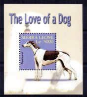 Sierra Leone - 2004 - Dogs/Greyhound Miniature Sheet - MNH - Sierra Leone (1961-...)