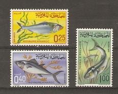 Maroc - 1965 - Poissons - Série Complète MLH - YT 514/16 - Alose - Palomette - Tassergali - Morocco (1956-...)