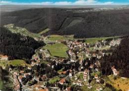 DEUTSCHLAND Allemagne - HERRENALB : Luftkurort - Im Schwarzwald - CPSM GF - - Bad Herrenalb
