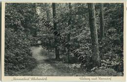 Berlin-Schulzendorf - Waldweg Nach Hermsdorf - 30er Jahre Verlag J. Goldiner Berlin - Waidmannslust