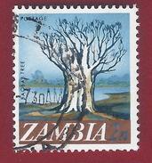1968 - Zambia - Baobab Tree - Mi:ZM 40 - Used - Zambia (1965-...)