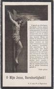1879 1921 Anna MJ Clerebout Cyriel Uyttenhove Appelterre Eichem Eychem Denderhoutem Doodsprentje Image Mortuaire - Images Religieuses