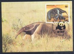 Paraguay 1985 Maximum Card Fauna WWF Animal Protection Tiere: Giant Anteater / Amiesenbär - Briefmarken