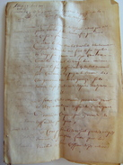 1701 PARCHEMIN EN PEAU TANNE A DECHIFFRER - Manuscrits