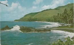 TAHITI -  La Baie De Tiare - Tahiti
