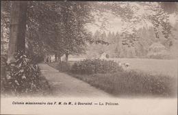 Gooreind Wuustwezel Missiehuis Der Franciscanessen Missionarissen Van Maria Colonie Missionaire La Pelouse Missie - Wuustwezel