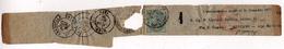 BANDE DE JOURNAL POUR LA FRANCE / CACHET A DATE MARSEILLE / NICE / FONTAN 1877 - 1861-78 Victor Emmanuel II.