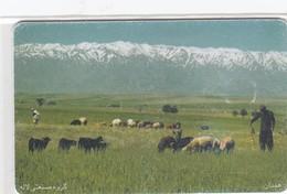 IRAN  TCI  #45
