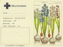BELGIË/BELGIQUE : 1995: Kalender / Calendrier De Poche @§@ MULTIPHARMA @§@ : FLORA,FLEURS MÉDICINALES,HYA, - Petit Format : 1991-00