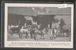 CPA 1405 Un Joli Lot De Juments Postières Et De Trait-Supplément De La Bretagne Hippique Du 30 Août 1913 - Bretagne