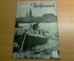 Der Kleine Tierfreund: Heft Nr. 2, Februar 1964 - Livres, BD, Revues
